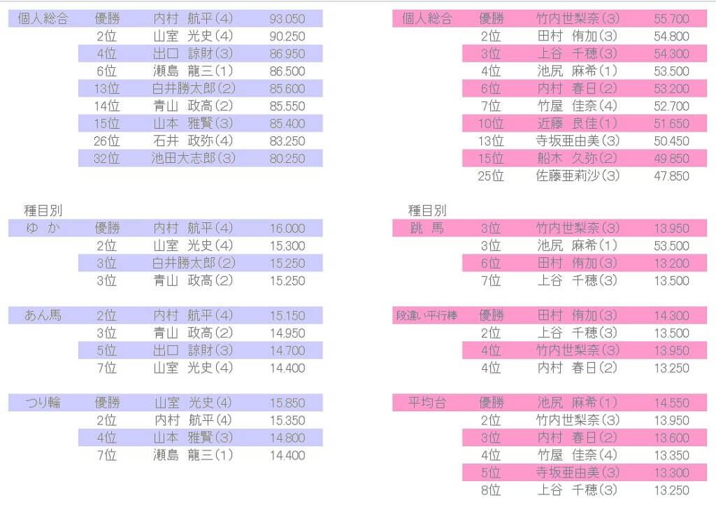 内村千穗の体操選手時代の成績